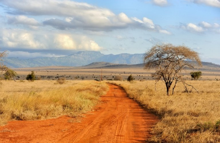Ecologists-in-Africa-2017